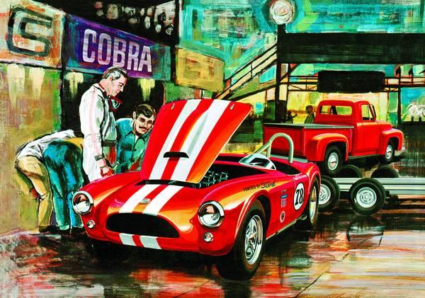 Bilde av AMT1073/06 - Cobra