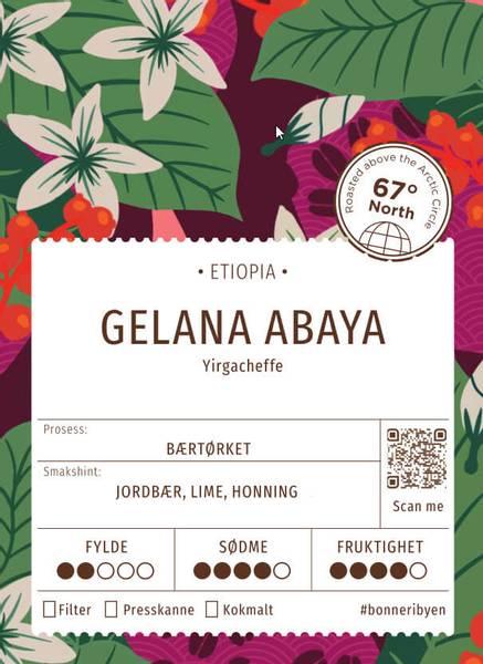 Gelana Abaya (Etiopia)
