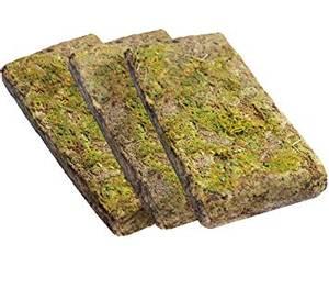 Bilde av Forest moss 3x100g