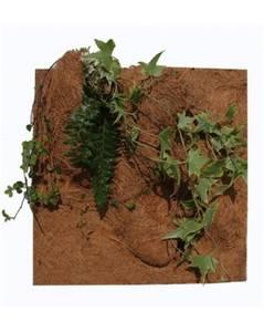Bilde av PLANTING BACKGROUND 50x50cm