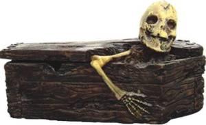 Bilde av Skjelett i kiste