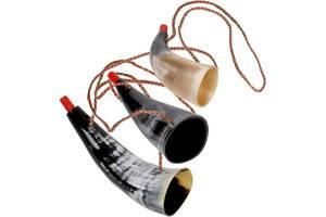 Bilde av GOKI -VIKINGEHORN middels stort,ekte horn