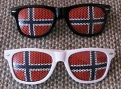 Norgesbrillen Sort Sol