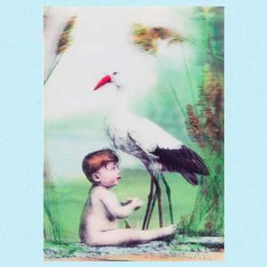 Bilde av 3D kort stork