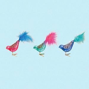 Bilde av Fugler i glass med glitter