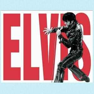 Bilde av Metallskilt Elvis red