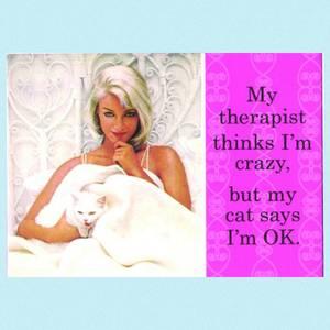Bilde av Magnet Terapeut