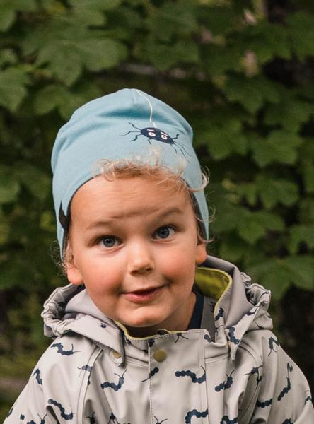 Kattnakken , Tosiders lue insekt arctic blue