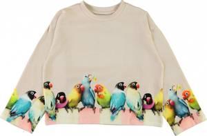 Bilde av Molo, Mikko love birds big