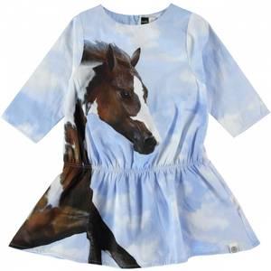 Bilde av Molo, Colette running horse