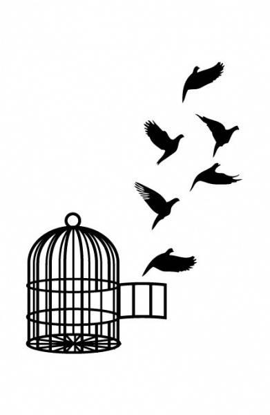 BoldeStatements tatovering, Birdscage