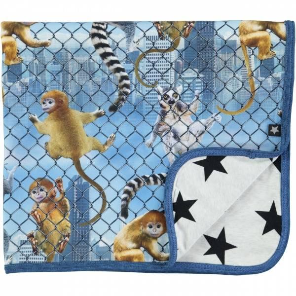 Molo, Niles climbing monkeys babyteppe