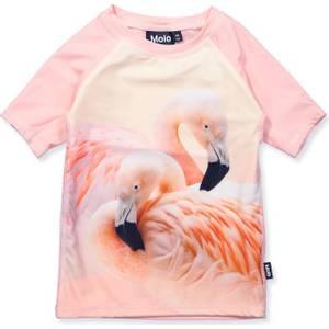 Bilde av Molo, Neptune UVtopp flamingo