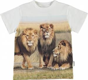 Bilde av Molo, Road 3 lions tskjorte