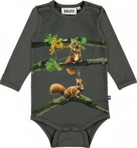 Bilde av Molo, Foss baby squirrel body