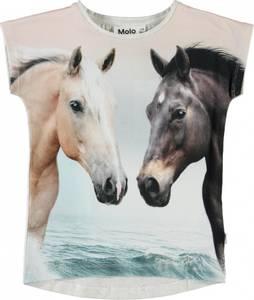 Bilde av Molo, Ragnhilde topp horse