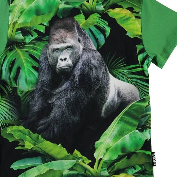 Molo, Roxo gorilla tskjorte