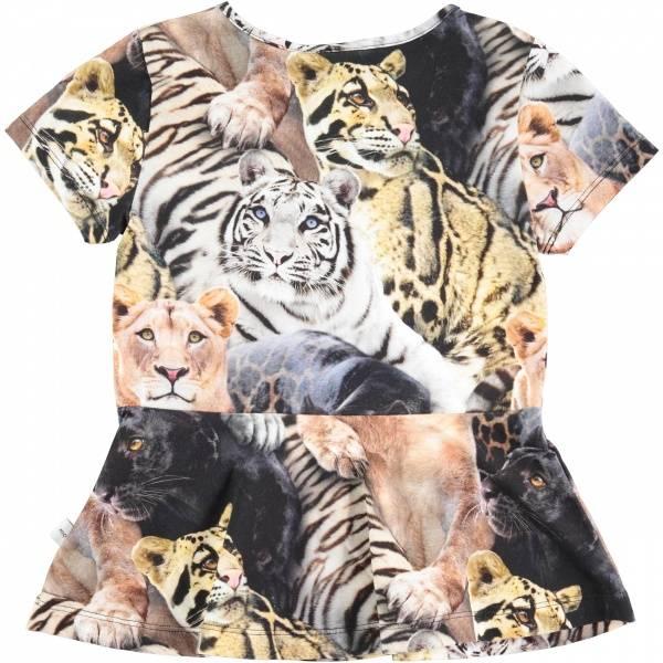 Molo, Rinah wild cats topp