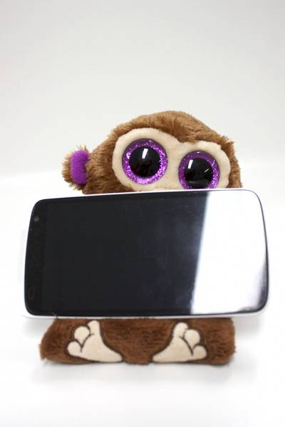 Ty, Peek-a-Boos Chimps apekatt