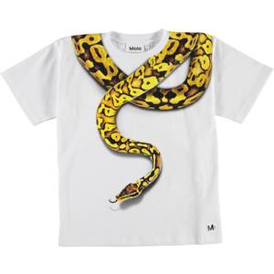 Bilde av Molo, Rillo snake charmer