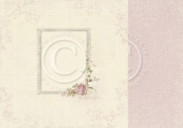 Bilde av PD; Flower Frames; Rosa
