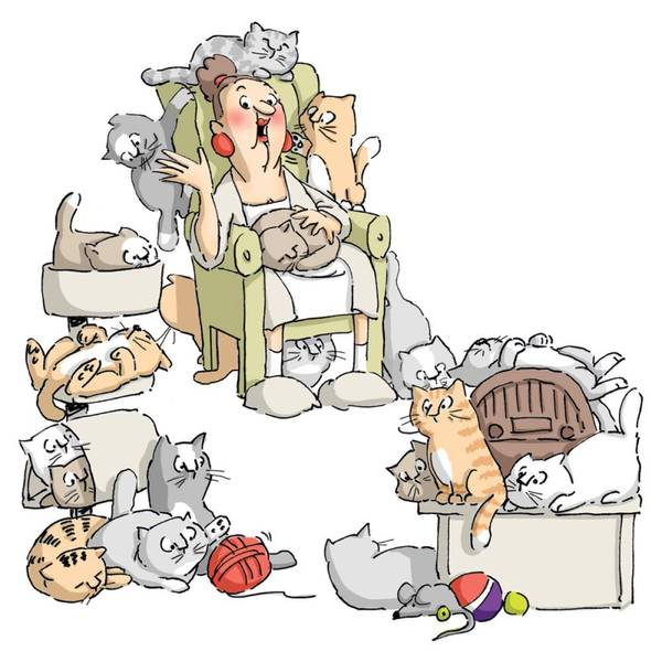 Bilde av Cat Lady