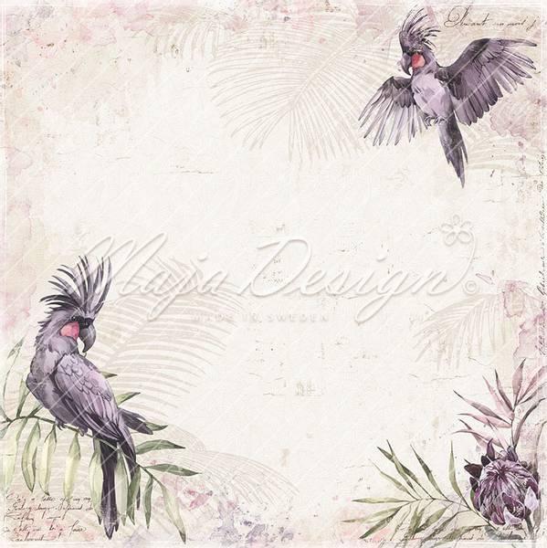 Bilde av Purple parrot