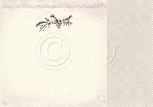Bilde av Scent of Lavendel - The