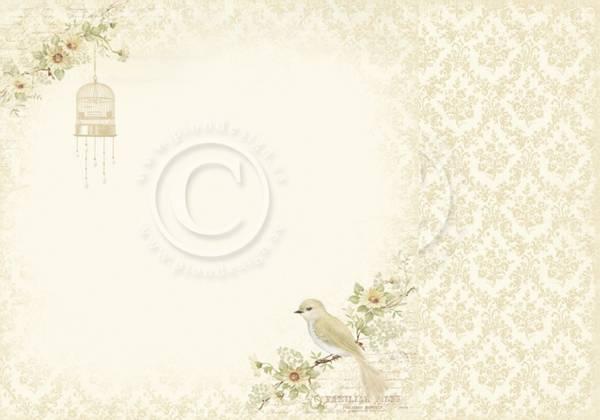 Bilde av Perching bird