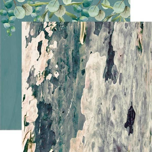 Bilde av Aucalyptus
