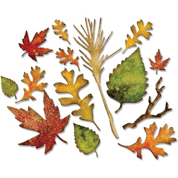 Bilde av Fall Foliage