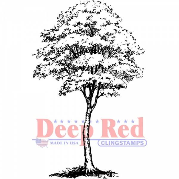 Bilde av Deep Red; Cottonwood
