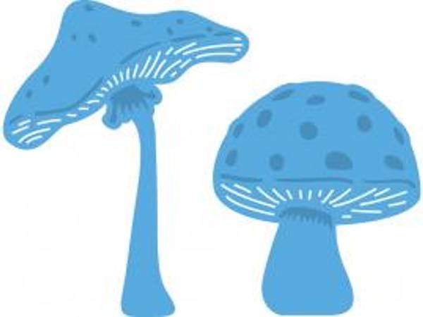 Bilde av Mushrooms
