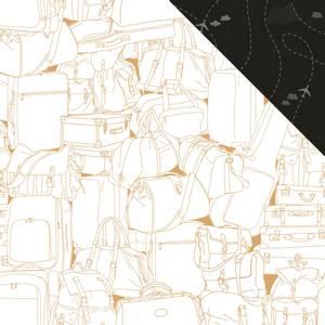 Bilde av Flights