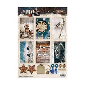 Bilde av studio light - Winter trails