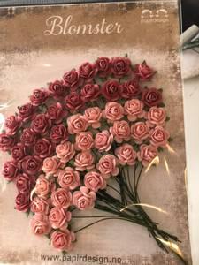 Bilde av Roser 1,2 Varm rosa