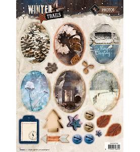 Bilde av Studio lights - winter trails