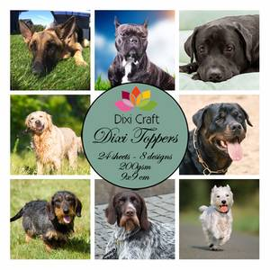 Bilde av dogs