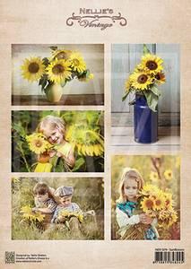 Bilde av sunflowers