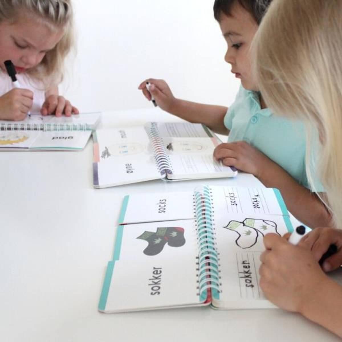 FØLELSER, ANSIKT, KLÆR - 3 lærerike bøker med klaffer