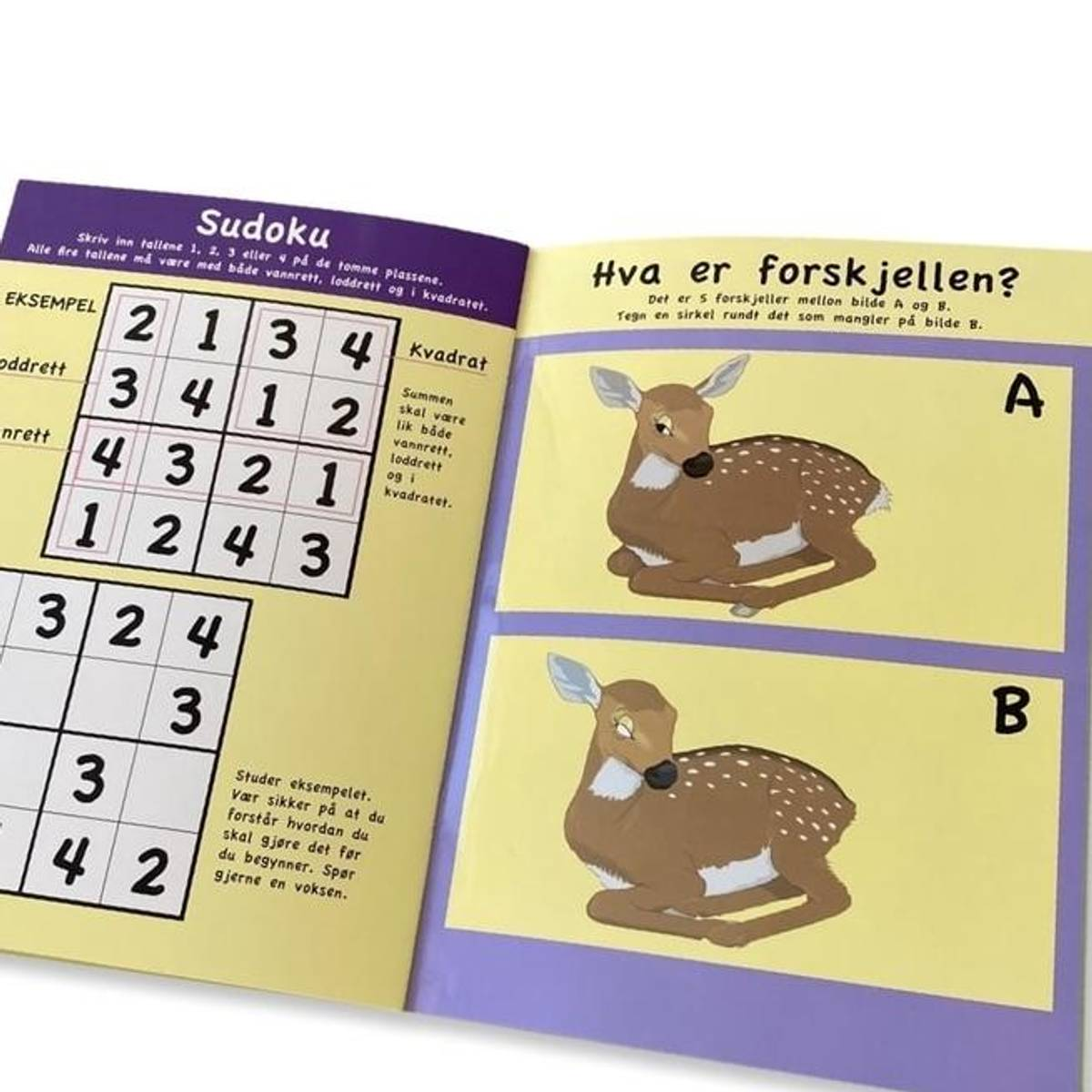 LEK OG MORO - Lærerik bok med tall og mengde