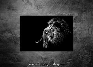 Bilde av Løve i profil