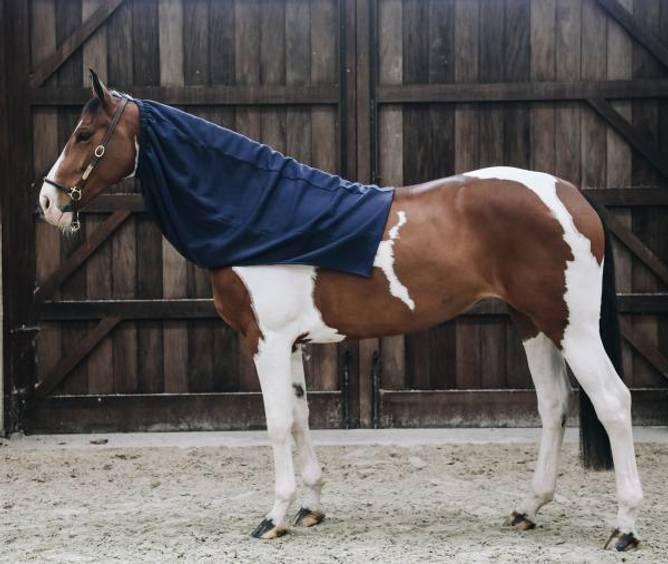 Bilde av Kentucky Cooler Fleece Horse Scarf