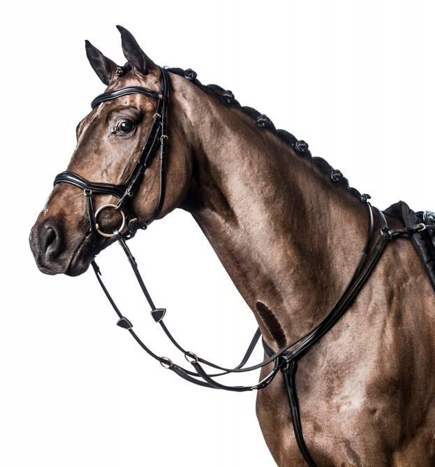 Bilde av HG soft leather breastplate