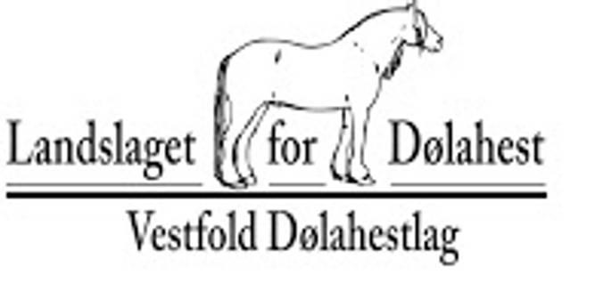 Bilde av Vestfold Dølahestlag