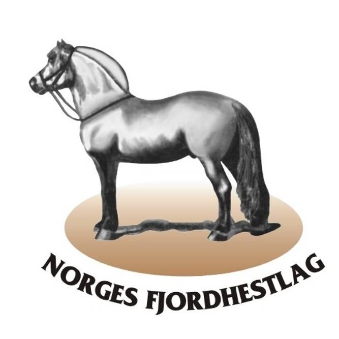 Bilde av Norges Fjordhestlag