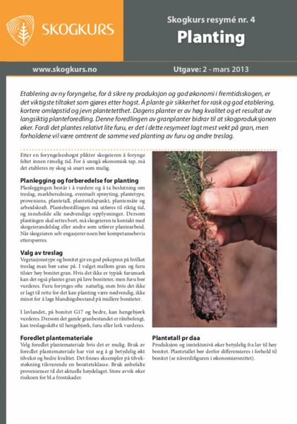 Planting - Skogkurs Resyme - Nr. 04