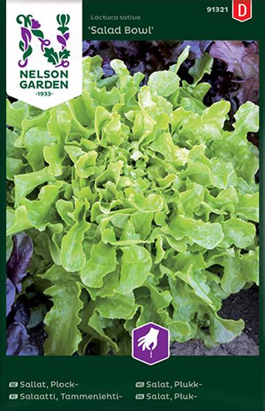 Bilde av Salat, Plukk- 'Salad Bowl'