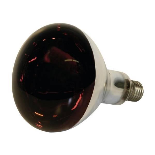Bilde av Kerbl varmepære 150W  av høy kvalitet. Hardglass