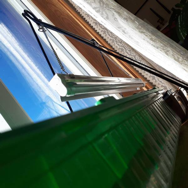 Bilde av Plantelysarmatur & lysrør 60 cm